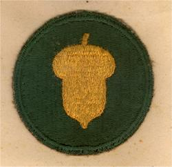 87th Division known as the Golden Acorn under Patton's 3rd Army.