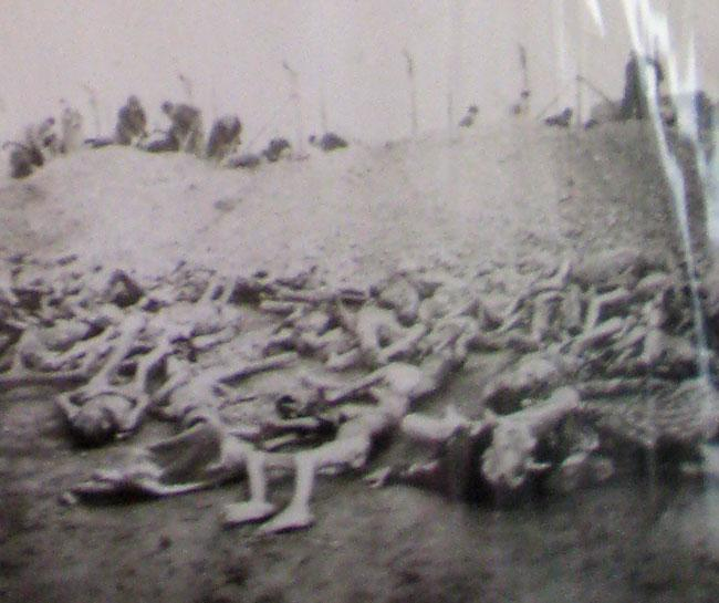 Dead bodies of Buchenwald holocaust victims.